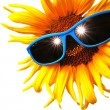 Sunflower with sunglasses — Foto Stock