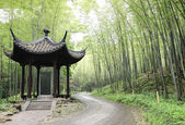 Asian Pavilion in bamboo forest — Stock Photo