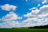 Field and sky — Foto Stock