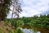 Bystritsa river — Stock Photo