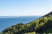 Votkinskoe reservoir — Stock Photo