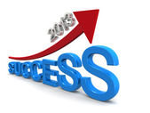 Target of success in year 2013 — Stock Photo