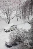 View on snowy street — Stock Photo