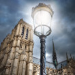 Street light on the background of the Cathedral of Notre Dame. P - Stock Photo