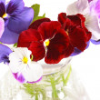 Pansies in a vase — Stock Photo