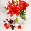 Red lily and fruit — Stock Photo