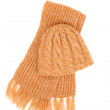 Cap and scarf — Stock Photo #40394175