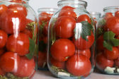 Winter tomatoes — 图库照片