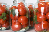 Winter tomatoes — Stockfoto