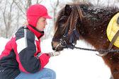 Mulher e cavalo — Foto Stock