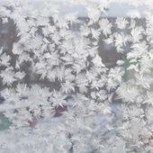 Winter ornament — Stock Photo