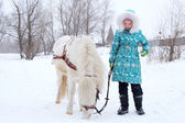 子と馬 — ストック写真