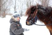 Feeding horse — Stock Photo