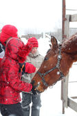 At ve çocuk — Stok fotoğraf