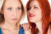 Young girls whispering — Stock Photo
