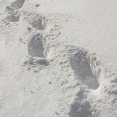 Sníh stopách — Stock fotografie