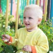Child smelling the flowers — Stock Photo #51505601
