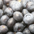 Blue berry — Stock Photo #25085885