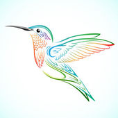 Colorful Hummingbird — Stock Vector