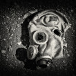 Gas mask. — Stock Photo