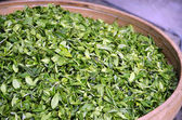 Fresh tea leaves — Stock Photo