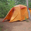 Stock Photo: Orange Tent in Algonquin