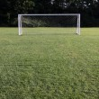 Stock Photo: Bright Soccer Net