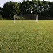 Stock Photo: Brightly Lit Soccer Net