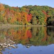 Stock Photo: Grand River Fall Reflection