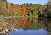 Grand River Fall Reflection — Stock Photo
