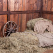 Stock Photo: Wood and hay background