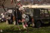 Belbek の軍事基地ですか? クリミア、ウクライナ 4515 — ストック写真