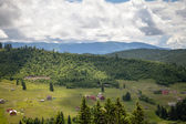 Summer day in Carpathian mountains — Stock Photo