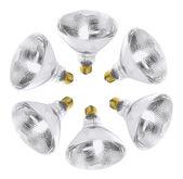 Ampoules réflecteur — Photo