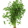 Parsley — Stock fotografie #13773704