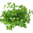 Parsley — Stock fotografie