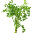 Parsley — Stock fotografie #13937253