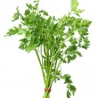 Foto Stock: Parsley