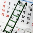 Ladder on Calendar — Stock Photo #13938876