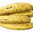 Bunch of Bananas — Stock Photo #14148770