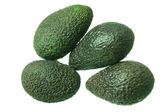 Avocados — Stock Photo