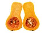 Butternut Pumpkin — Stock Photo