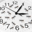 Stock Photo: Toy Ants on Clock