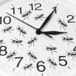 图库照片: Toy Ants on Clock