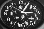 Toy Cockroaches on Clock — Stock Photo