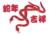 Year of the Snake — Stock Photo