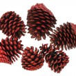 Foto Stock: Fir Cones