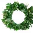 Stock Photo: Garland