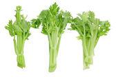 Stalks of Celery — Stock Photo