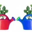 Watering Cans — Stock Photo #8112116